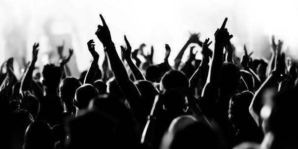 Concert Attendees Experience